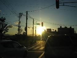 oyachi.jpg